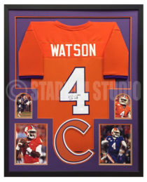 Watson, DeSean Framed Jersey