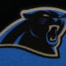 Kuechly, Luke Framed Panthers Jersey_Logo