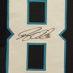 Olsen, Greg Framed Panthers Jersey2_Number