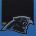 Olsen, Greg Framed Panthers Jersey_Photos