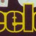Polamalu, Troy Framed Steelers Jersey_Font