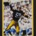 Steelers Double_Ham Photo